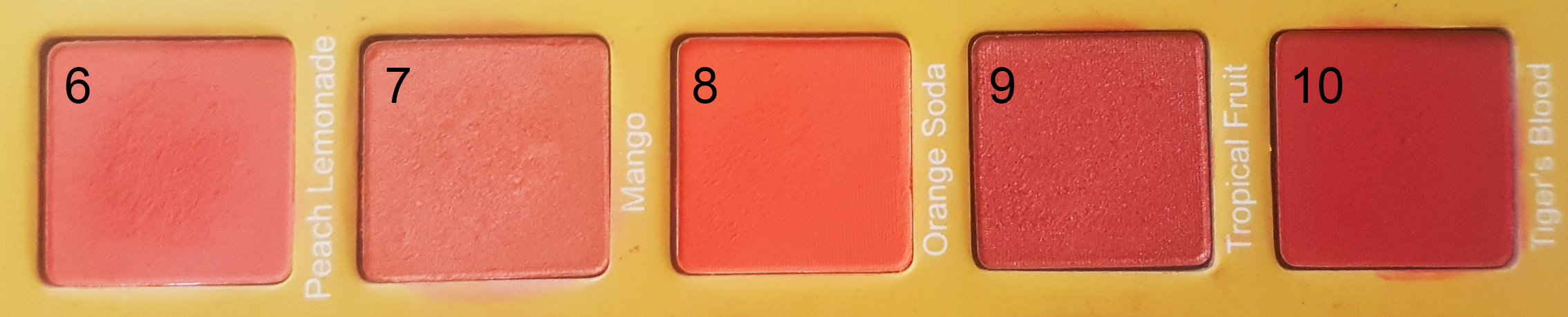 vertical orange.jpg